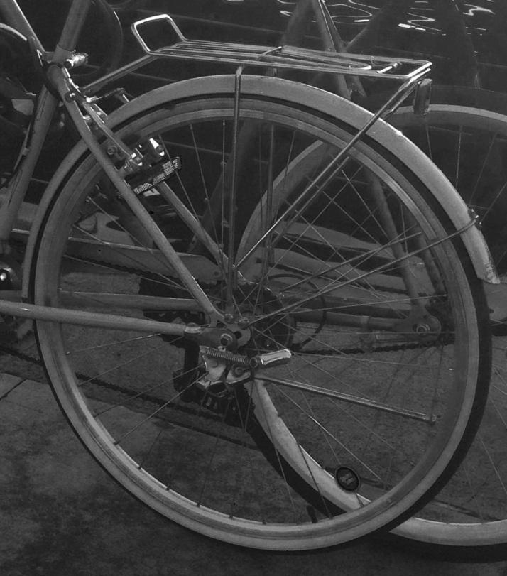 Back Wheel of Bicycle